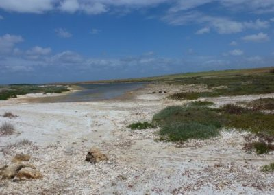 Lagune mit Quarzsand